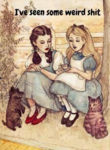 "Alice from Alice in Wonderland sitting next to Dorothy from The Wizard of Oz says ""I've seen some weird shit."""